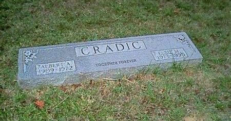 KITE CRADIC, ELSIE MAE - Hawkins County, Tennessee | ELSIE MAE KITE CRADIC - Tennessee Gravestone Photos