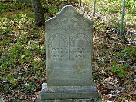 SIMMONS, JOHN - Hawkins County, Tennessee | JOHN SIMMONS - Tennessee Gravestone Photos