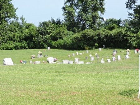 *CEMETERY VIEW,  - Haywood County, Tennessee |  *CEMETERY VIEW - Tennessee Gravestone Photos