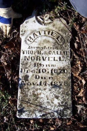 NORVELL, HATTIE L. - Haywood County, Tennessee | HATTIE L. NORVELL - Tennessee Gravestone Photos