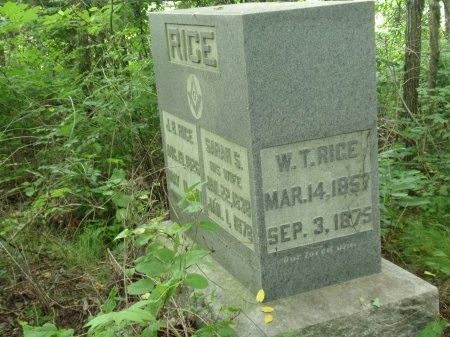 RICE, WILLIAM T. - Haywood County, Tennessee | WILLIAM T. RICE - Tennessee Gravestone Photos