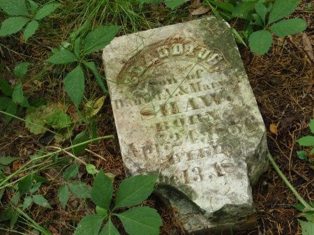 SHAW, CLAUDUS - Haywood County, Tennessee | CLAUDUS SHAW - Tennessee Gravestone Photos