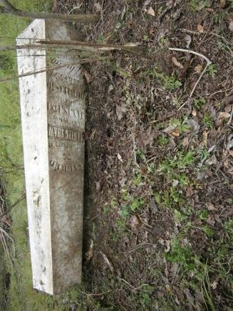 SHAW, DANIEL - Haywood County, Tennessee   DANIEL SHAW - Tennessee Gravestone Photos