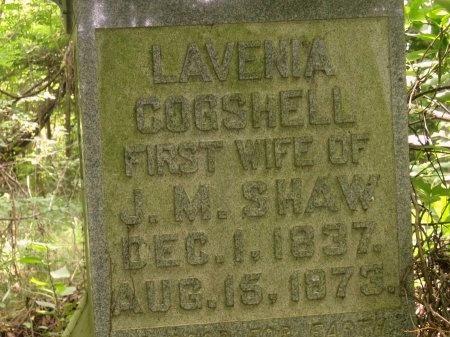 SHAW, LAVENIA - Haywood County, Tennessee | LAVENIA SHAW - Tennessee Gravestone Photos