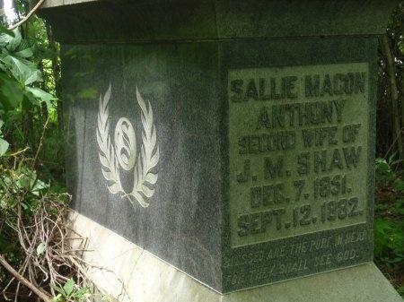 SHAW, SALLIE MACON - Haywood County, Tennessee | SALLIE MACON SHAW - Tennessee Gravestone Photos
