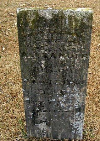 ALEXANDER, HUGH MCMILLAN - Henry County, Tennessee   HUGH MCMILLAN ALEXANDER - Tennessee Gravestone Photos