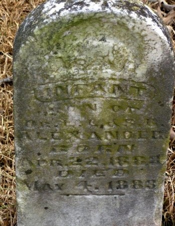 ALEXANDER, INFANT - Henry County, Tennessee | INFANT ALEXANDER - Tennessee Gravestone Photos