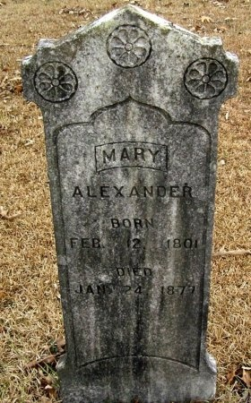 FLIPPO ALEXANDER, MARY - Henry County, Tennessee | MARY FLIPPO ALEXANDER - Tennessee Gravestone Photos