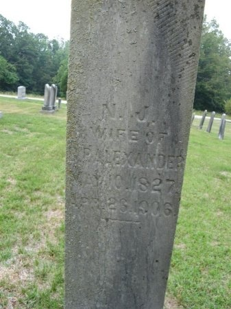 ALEXANDER, NANCY JANE - Henry County, Tennessee | NANCY JANE ALEXANDER - Tennessee Gravestone Photos