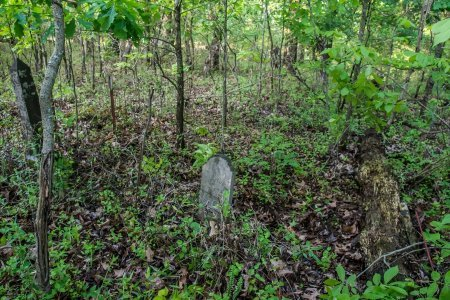 *CEMETERY VIEW,  - Henry County, Tennessee |  *CEMETERY VIEW - Tennessee Gravestone Photos
