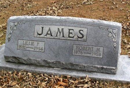 PASCHALL JAMES, SARAH LILLIE - Henry County, Tennessee | SARAH LILLIE PASCHALL JAMES - Tennessee Gravestone Photos