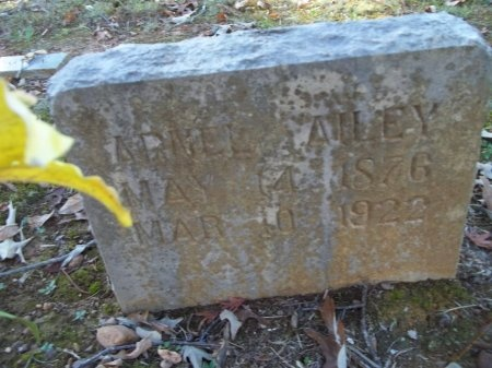 AILEY, ARNELL - Jefferson County, Tennessee | ARNELL AILEY - Tennessee Gravestone Photos