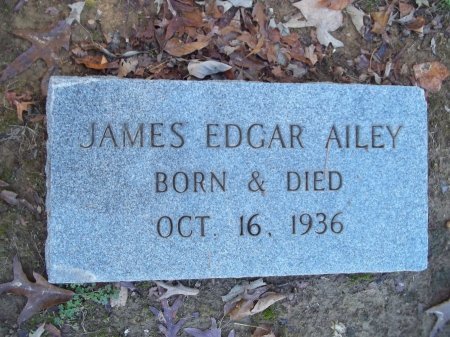 AILEY, JAMES EDGAR - Jefferson County, Tennessee | JAMES EDGAR AILEY - Tennessee Gravestone Photos