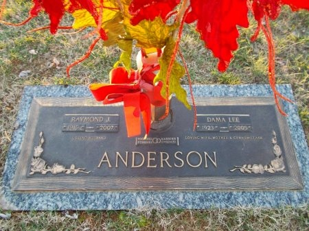 ANDERSON, DAMA LEE - Jefferson County, Tennessee | DAMA LEE ANDERSON - Tennessee Gravestone Photos