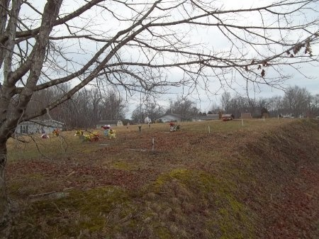 *BLUE SPRING OVERVIEW,   - Jefferson County, Tennessee     *BLUE SPRING OVERVIEW - Tennessee Gravestone Photos