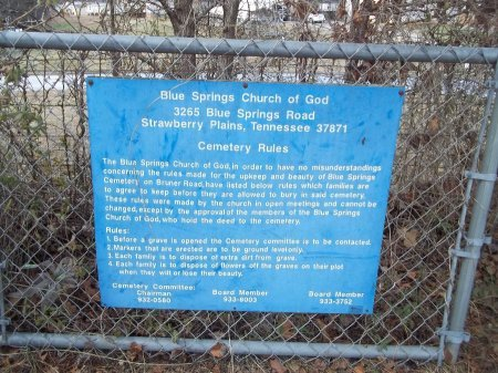 *BLUE SPRING SIGN,   - Jefferson County, Tennessee |   *BLUE SPRING SIGN - Tennessee Gravestone Photos