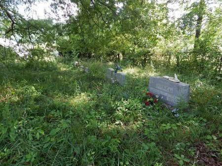 *VANCE CEMETERY OVERVIEW 1, . - Jefferson County, Tennessee | . *VANCE CEMETERY OVERVIEW 1 - Tennessee Gravestone Photos