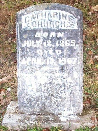 FRITTS CHURCH, CATHARINE J. - Johnson County, Tennessee | CATHARINE J. FRITTS CHURCH - Tennessee Gravestone Photos