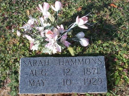 HAMMONS, SARAH ELIZABETH - Johnson County, Tennessee | SARAH ELIZABETH HAMMONS - Tennessee Gravestone Photos
