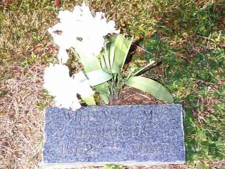 HAMMONS, WILLIAM M. - Johnson County, Tennessee | WILLIAM M. HAMMONS - Tennessee Gravestone Photos