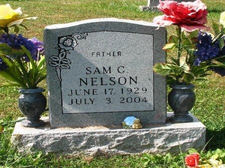 NELSON, SAMUEL CLARENCE - Johnson County, Tennessee   SAMUEL CLARENCE NELSON - Tennessee Gravestone Photos
