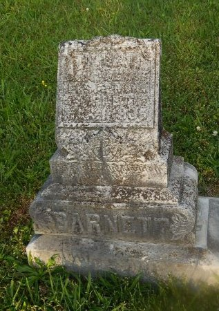 BARNETT, LILLIAN - Knox County, Tennessee | LILLIAN BARNETT - Tennessee Gravestone Photos