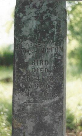 BIRD, GEORGE WASHINGTON - Knox County, Tennessee | GEORGE WASHINGTON BIRD - Tennessee Gravestone Photos