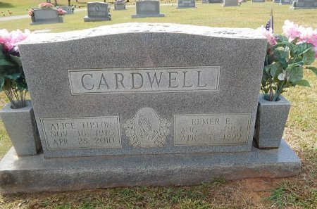 CARDWELL, ALICE - Knox County, Tennessee | ALICE CARDWELL - Tennessee Gravestone Photos