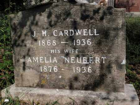 NEUBERT CARDWELL, AMELIA - Knox County, Tennessee | AMELIA NEUBERT CARDWELL - Tennessee Gravestone Photos