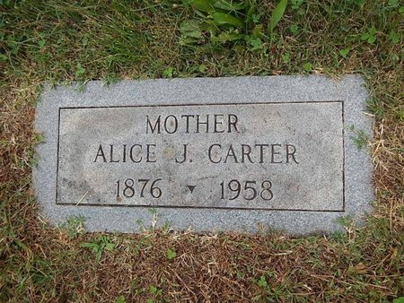 CARTER, ALICE J - Knox County, Tennessee | ALICE J CARTER - Tennessee Gravestone Photos