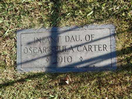 CARTER, DAUGHTER - Knox County, Tennessee | DAUGHTER CARTER - Tennessee Gravestone Photos