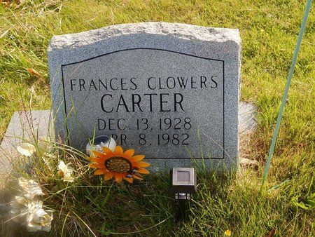 CARTER, FRANCES - Knox County, Tennessee | FRANCES CARTER - Tennessee Gravestone Photos