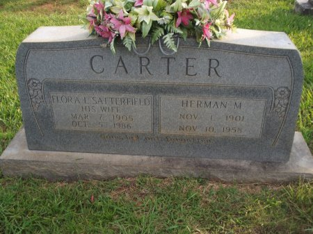 CARTER, HERMAN M - Knox County, Tennessee | HERMAN M CARTER - Tennessee Gravestone Photos