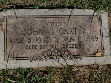 CARTER, JOHN D - Knox County, Tennessee | JOHN D CARTER - Tennessee Gravestone Photos
