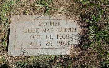 CARTER, LILLIE MAE - Knox County, Tennessee | LILLIE MAE CARTER - Tennessee Gravestone Photos