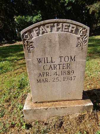 CARTER, WILL TOM - Knox County, Tennessee | WILL TOM CARTER - Tennessee Gravestone Photos