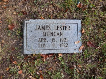 DUNCAN, JAMES LESTER - Knox County, Tennessee | JAMES LESTER DUNCAN - Tennessee Gravestone Photos