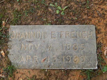 FRENCH, SHANNON E - Knox County, Tennessee | SHANNON E FRENCH - Tennessee Gravestone Photos