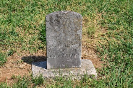 MAYS, WILEY F. - Knox County, Tennessee | WILEY F. MAYS - Tennessee Gravestone Photos