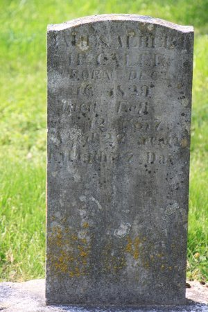 MCCALL, JAMES ALBERT - Knox County, Tennessee | JAMES ALBERT MCCALL - Tennessee Gravestone Photos
