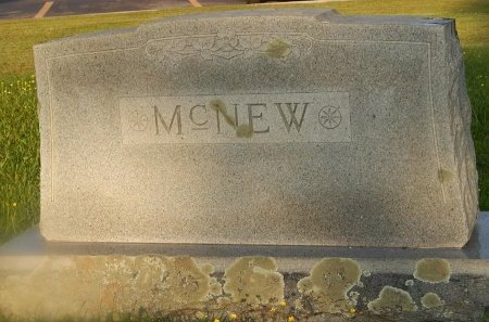 MCNEW, FAMILY MARKER - Knox County, Tennessee | FAMILY MARKER MCNEW - Tennessee Gravestone Photos