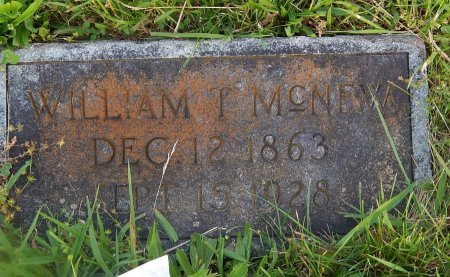 MCNEW, WILLIAM T - Knox County, Tennessee | WILLIAM T MCNEW - Tennessee Gravestone Photos