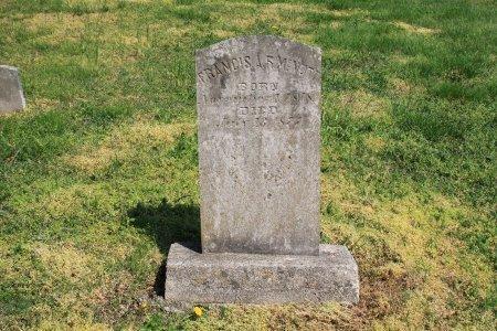 "MCNUTT, FRANCIS ALEXANDER RAMSEY ""FRANK"" - Knox County, Tennessee | FRANCIS ALEXANDER RAMSEY ""FRANK"" MCNUTT - Tennessee Gravestone Photos"