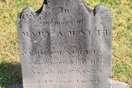MCNUTT, MARY AGNES (CLOSE UP) - Knox County, Tennessee   MARY AGNES (CLOSE UP) MCNUTT - Tennessee Gravestone Photos