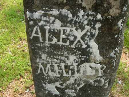 MILLER, ALEX - Knox County, Tennessee | ALEX MILLER - Tennessee Gravestone Photos