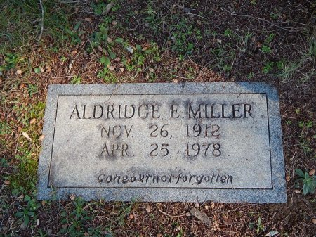 MILLER, ALDRIDGE E - Knox County, Tennessee   ALDRIDGE E MILLER - Tennessee Gravestone Photos