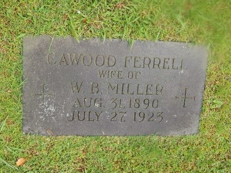 MILLER, CAWOOD  - Knox County, Tennessee | CAWOOD  MILLER - Tennessee Gravestone Photos