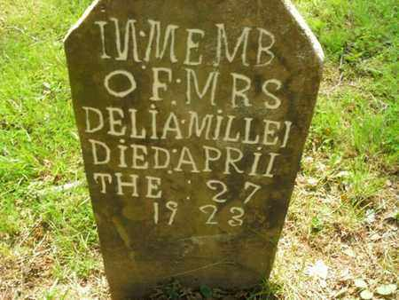 MILLER, DELIA - Knox County, Tennessee | DELIA MILLER - Tennessee Gravestone Photos