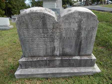 MILLER, HARRY - Knox County, Tennessee | HARRY MILLER - Tennessee Gravestone Photos
