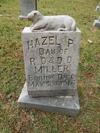 MILLER, HAZEL P - Knox County, Tennessee | HAZEL P MILLER - Tennessee Gravestone Photos